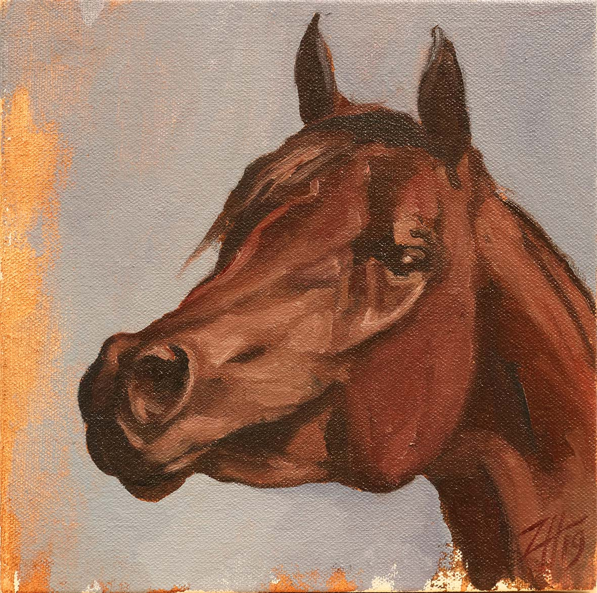 Equine Head Arab Chestnut (study 32)