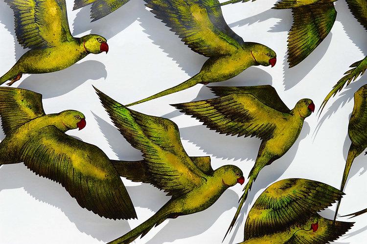 DB - Parakeets (detail).jpg