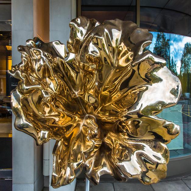 Leaf by Jill Berelowitz