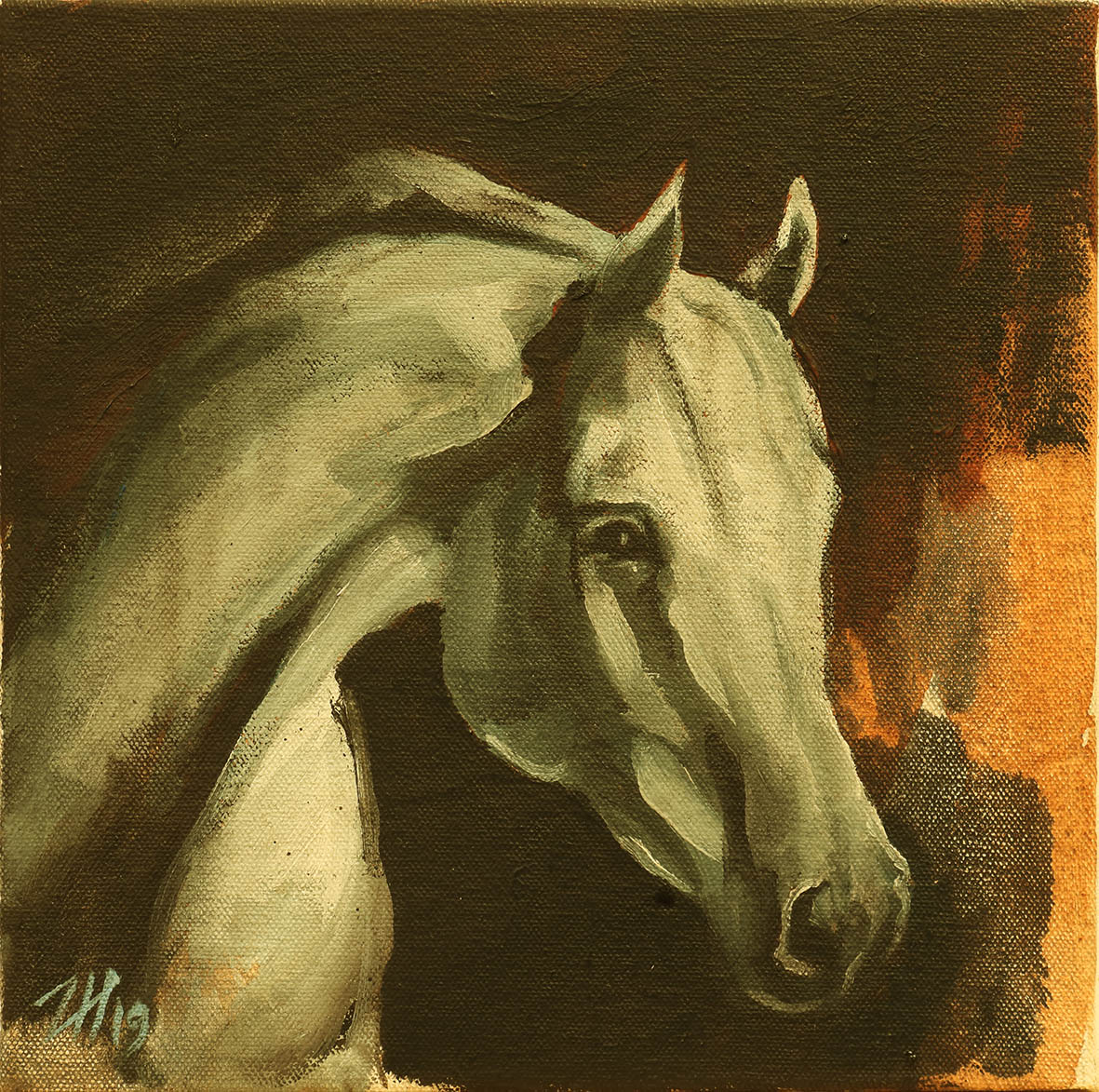 Equine Head Arab White (study 32)