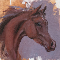 Equine Head Chestnut (study 22)