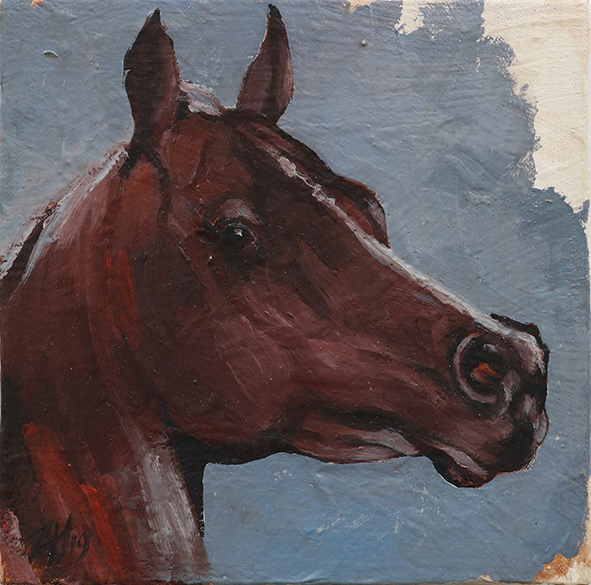 Equine Head Arab Chestnut (study 90)