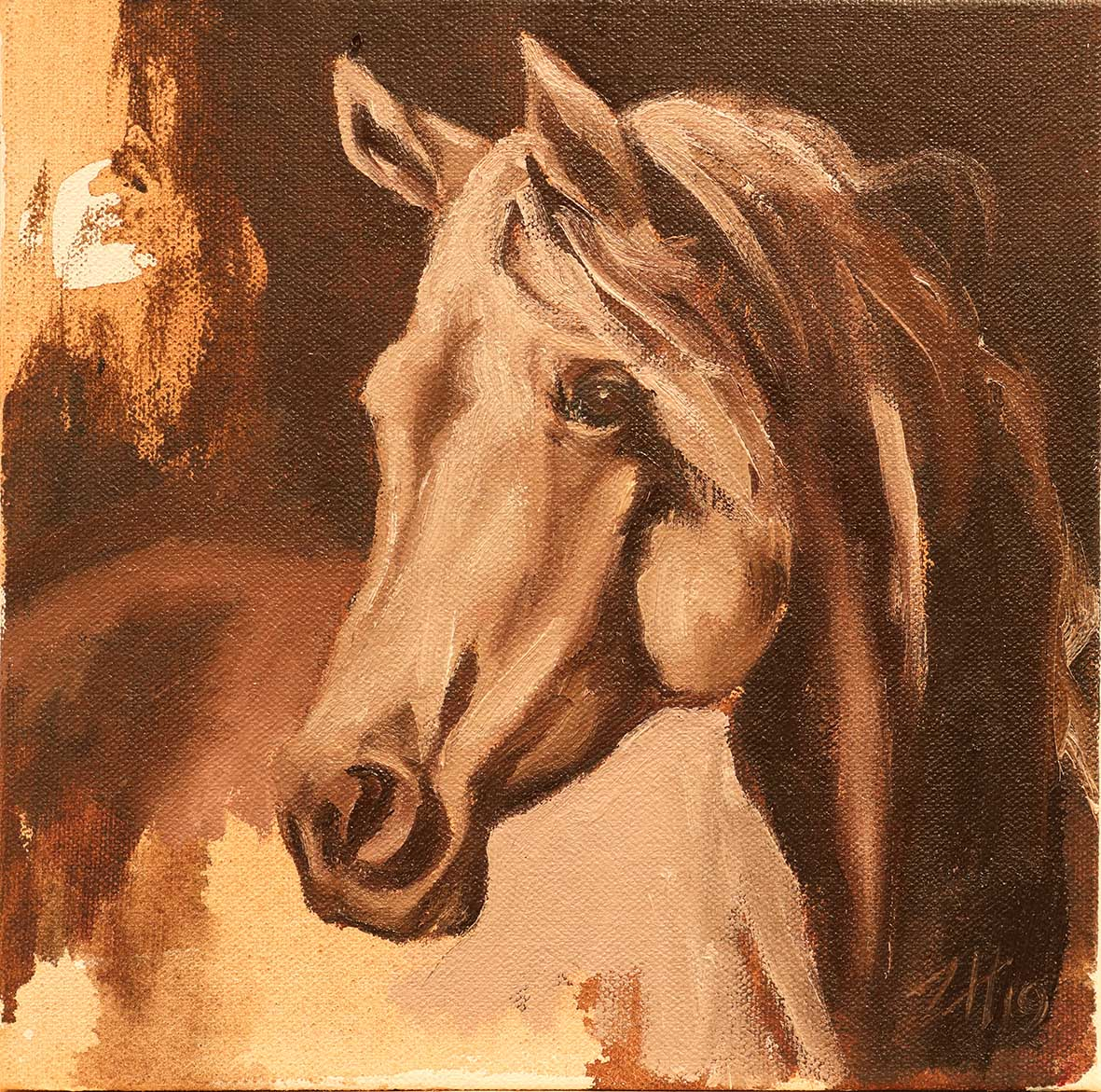 Equine Arab Head White (study 26)