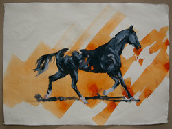 Arabian IV (study)