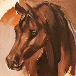 Equine Head Arab Chestnut (study 14)