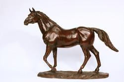 Stallion Galoubet