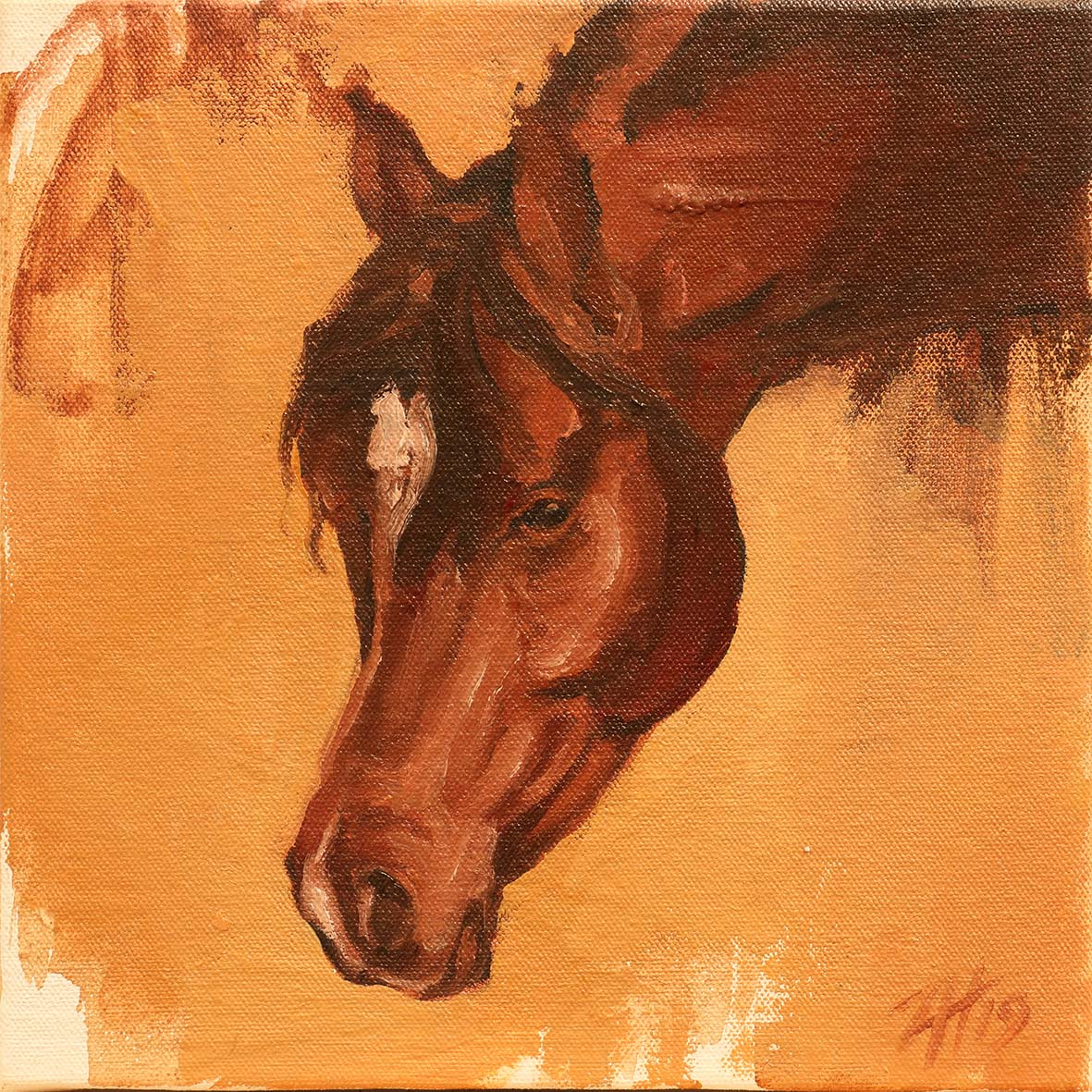 Equine Head Arab Chestnut (study 14A)