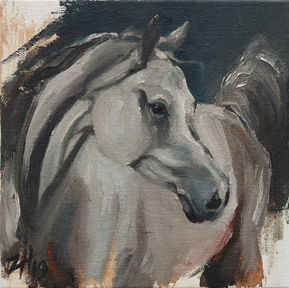 Equine Head White (study 1)