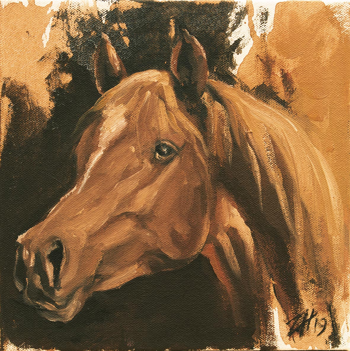 Equine Head Arab Chestnut (study 47)