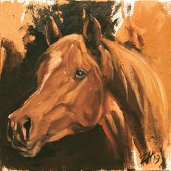 Equine Head Arab Chestnut (study 47)