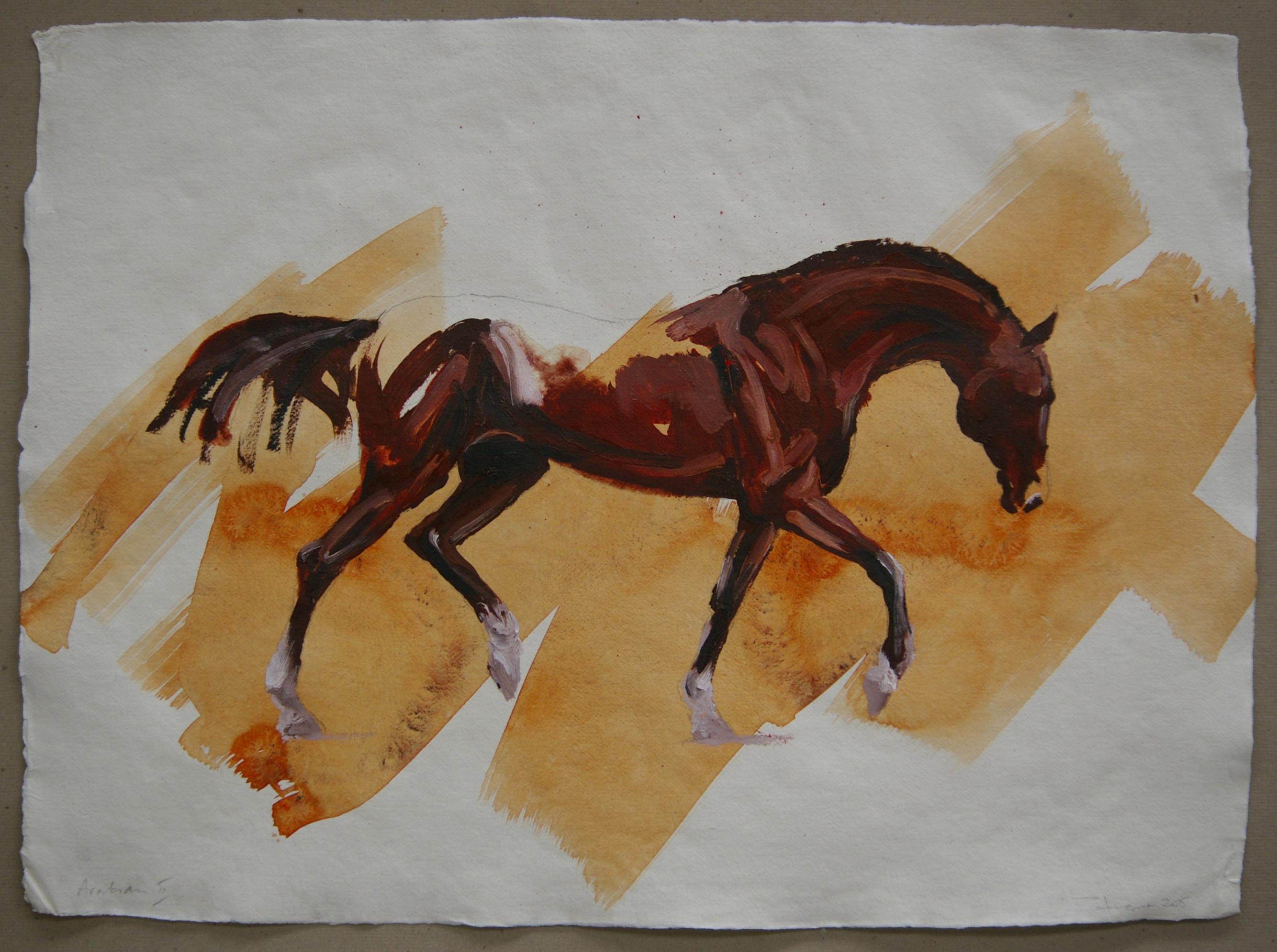 Arabian II (study)