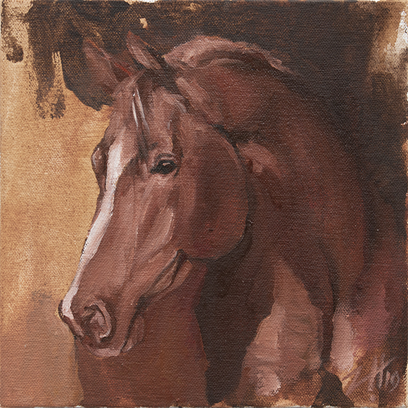 Equine Head Arab Chestnut (study 31)