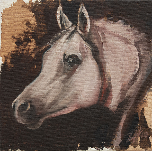 Equine Head Arab White (study 1)