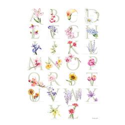 Flowerbet