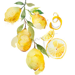 FRUITS_LEMON
