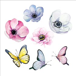 Hand painted illustrations