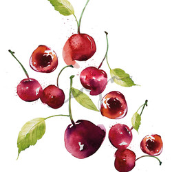 FRUITS_CHERRIES