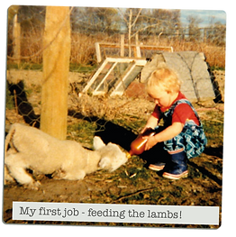 first-job-feeding-the-lambs.png