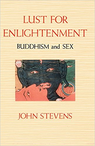Lust for Enlightenment - John Stevens
