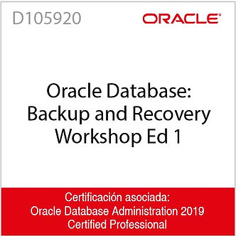 D105920  Oracle Database: Backup and Recovery Workshop Ed 1