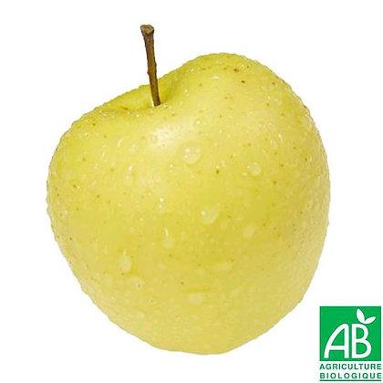 POMME variété Golden Bio (601)