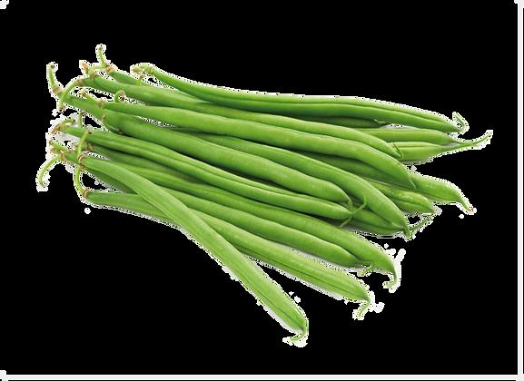 HARICOT Vert (962)