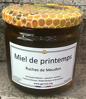 MIEL de Printemps - Ruches de Meudon
