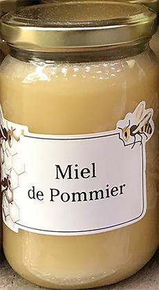 MIEL de Pommier