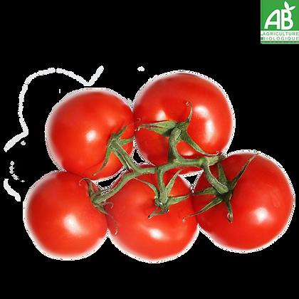 TOMATE GRAPPE cultivée sans Pesticides (661)