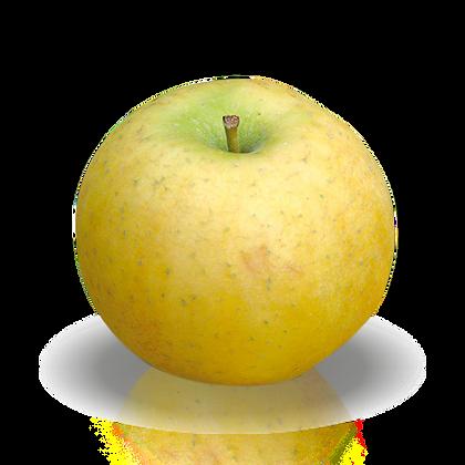 Pomme Chantecler PROMO (103)