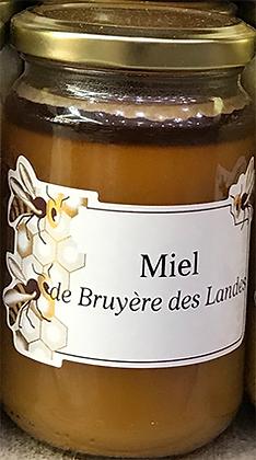 MIEL de Bruyère des Landes
