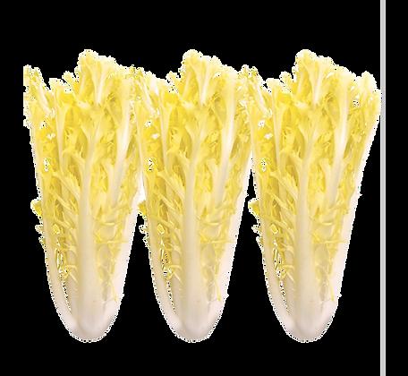 Salade Friseline (917)
