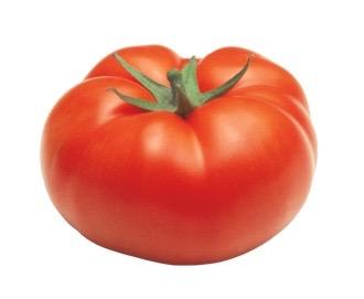 Tomate Ronde cultivée en pleine terre (258)