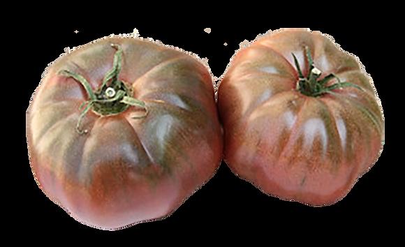 Tomate Noire de Crimée (509)