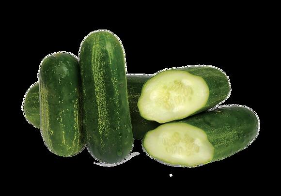Mini concombre (948)