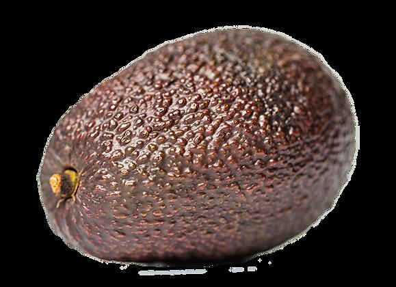 AVOCAT Sélection variété Hass très Gros Calibre (405)