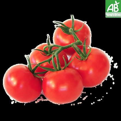 Tomate Grappe Bio (607)