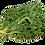 Thumbnail: Choux Kale (986)