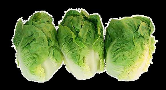 Coeur de salade SUCRINE par 6 (980)