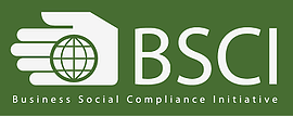 BHR participated in a panel at the Annual BSCI Conference in Brussels