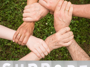 Establishing Your Perinatal Team