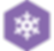 tracker-icons-colour-hexagons-snow-2.png