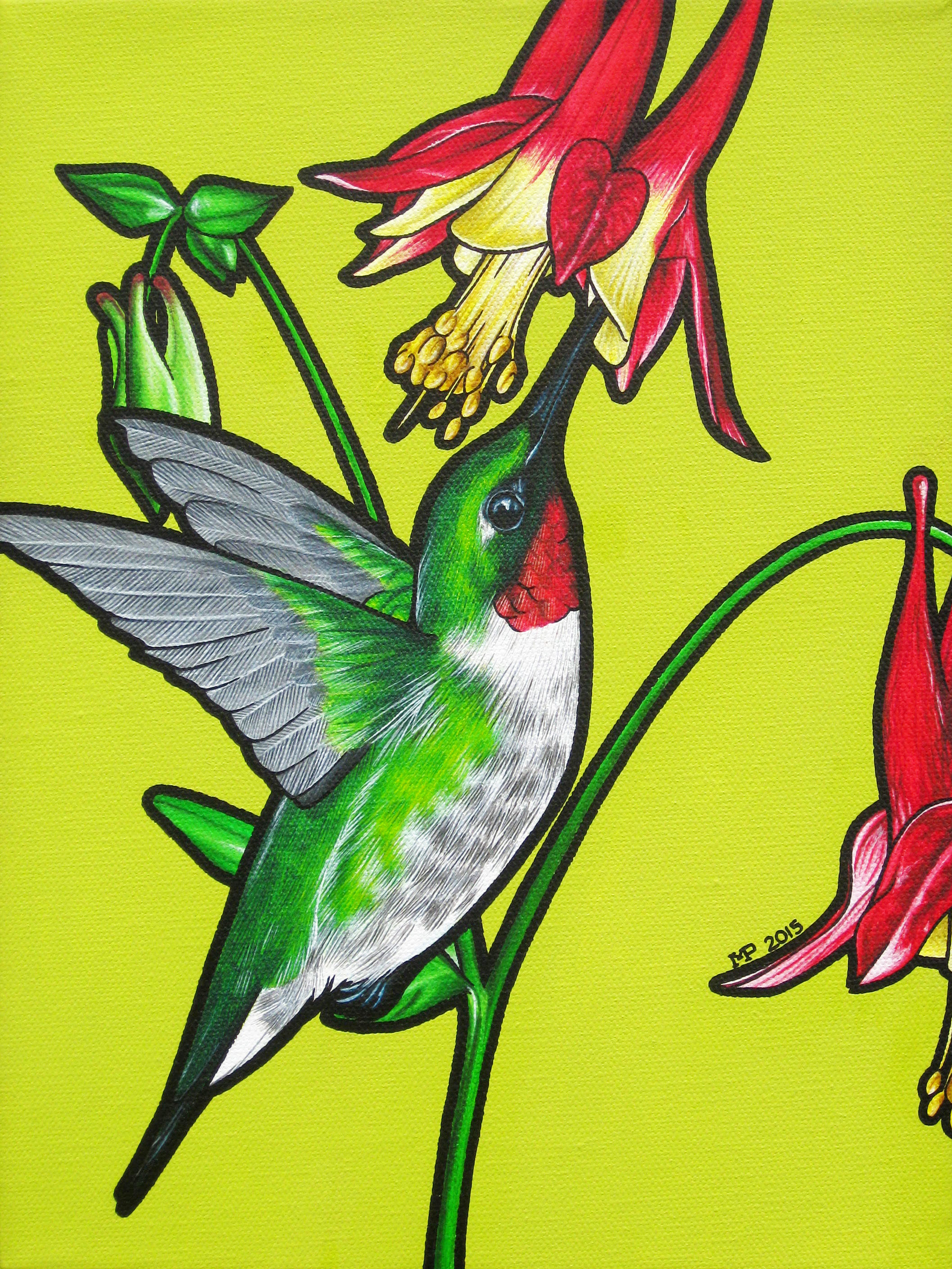 Ruby Throated Humming Bird.jpg