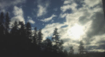 Outdoor Therapy | Vancouver Counsellors | Bonfire Counselling
