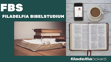 FBS HEMSIDA.jpg