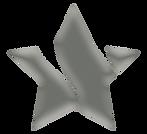 PLATINUM STAR.png
