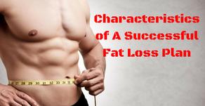 The 5.5 Characteristics of A Successful Fat Loss Plan