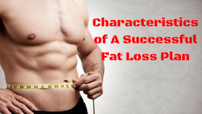 The 5.5 Characteristics of A Successful Fat Loss Plan