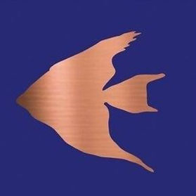 cropped fish.jpg