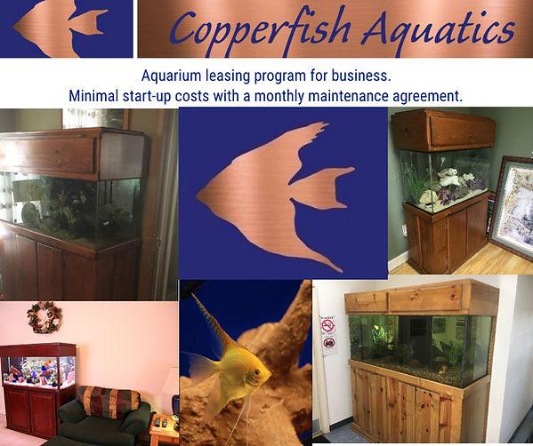 aquariumleasing.jpg